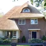 rietdekker Apeldoorn_kosten rieten dak_Rieten dak - Villa Leersum 2